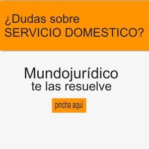 Guía sobre el Servicio Doméstico